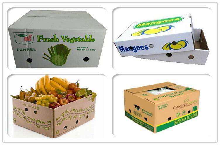 Quy cách đóng gói trái cây khi vận chuyển đi nước ngoài